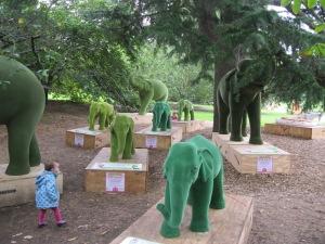 Elephantlets