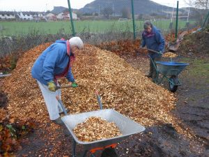 Wood chips being put around the beds