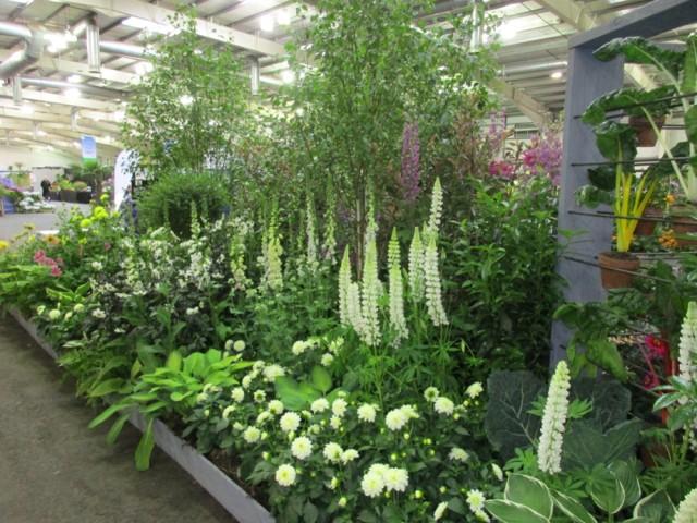 Caley Floral Display 2