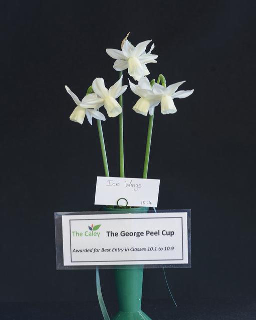 george-peel-cup