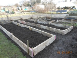new-raised-beds-2-march-2017