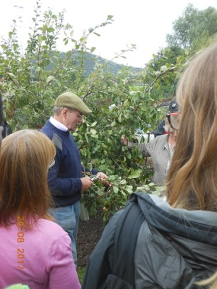 26 Aug - George Anderson - Pruning Workshop