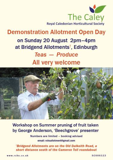 Allotment Open Day 2017