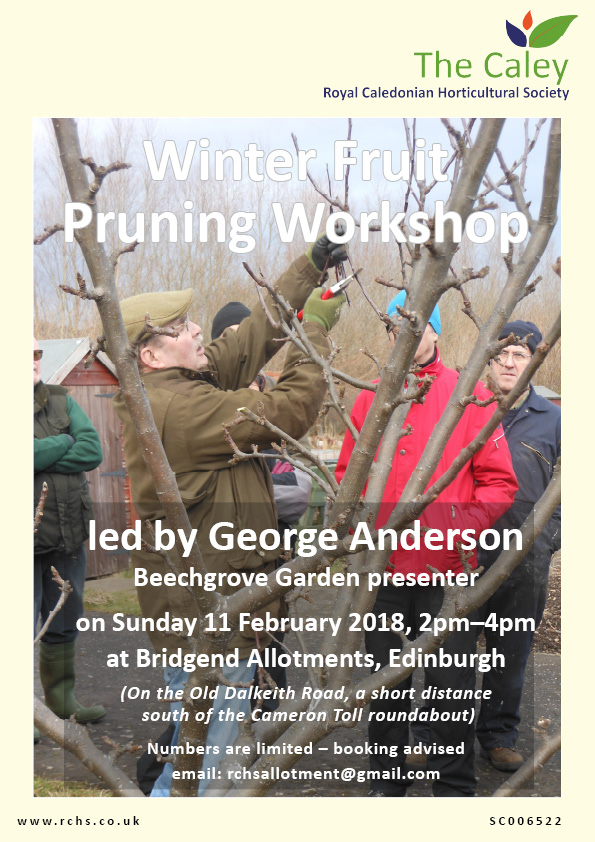 Pruning Workshop 11-2-18